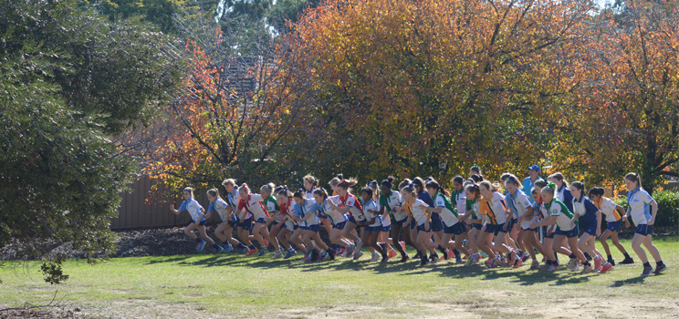 W3 Cross Country Interhouse
