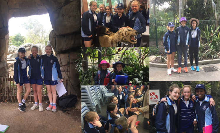 W8 Year 7 Zoo Excursion