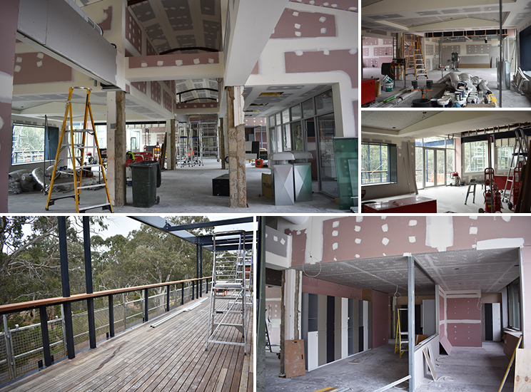 W5 Library Update