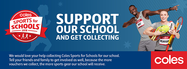 W3 Sports for Schools