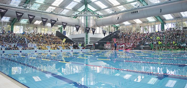 W5 Swimming Carnival