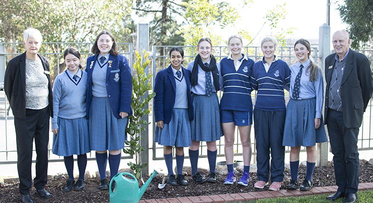 W2 - Tree Planting